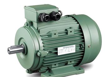 Picture for category Electrical Motor